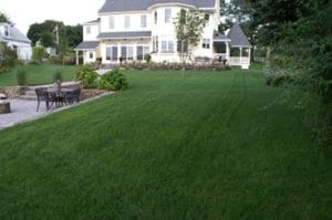 Lawn Services in Upton, Mass