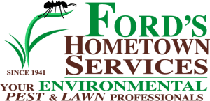Ford's Hometown Service