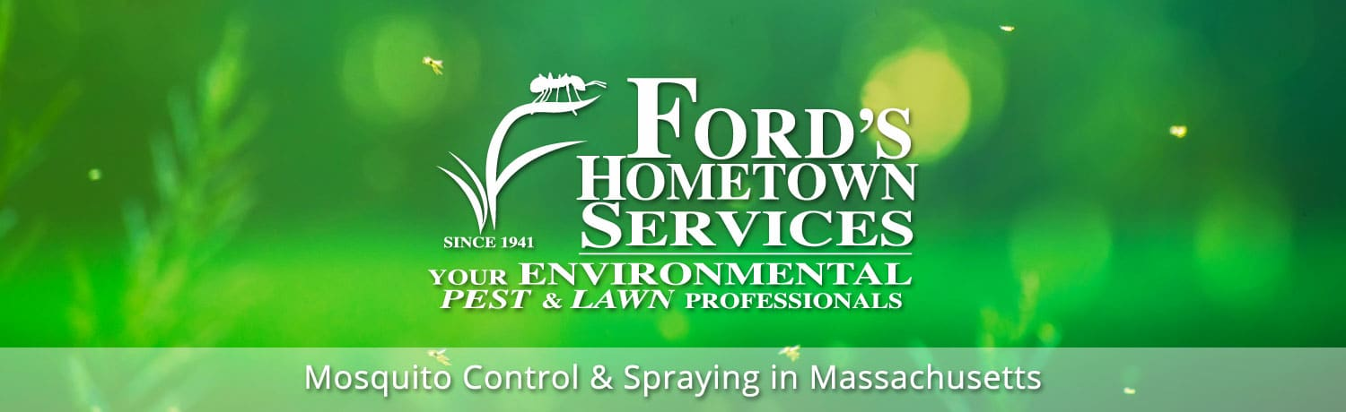 Mosquito Control & Spraying in Massachusetts